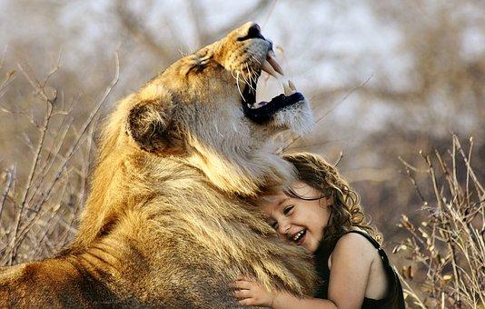 lion-3012515__340